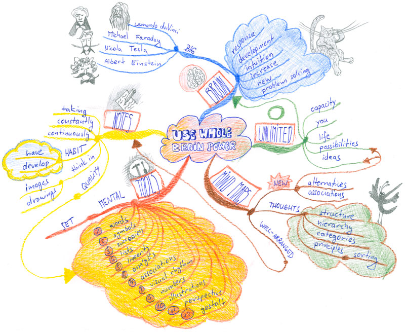 Whole Brain Power Mind Map